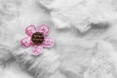 abstrakcjonistyczny futerkowy makro- fotografia biel Fotografia Stock