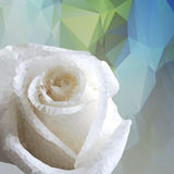 Abstrakcjonistyczny geometryczny wektorowy kwiat robić od trójboków Zdjęcia Royalty Free