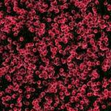 abstrakcjonistyczny grunge materiał mieszająca tekstura zdjęcie stock
