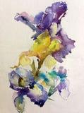 Abstrakcjonistyczny jaskrawy barwiony dekoracyjny t?o Kwiecisty deseniowy handmade Pi?kny czu?y romantyczny bukiet irysowi kwiaty ilustracji