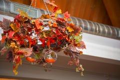 Abstrakcjonistyczny jesień skład z przejrzystym spheres-2-2 Obraz Stock