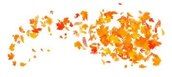Abstrakcjonistyczny jesień sztandaru szablon z kolorowymi liśćmi 10 eps ilustracji