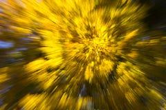 Abstrakcjonistyczny jesień widok zdjęcia stock