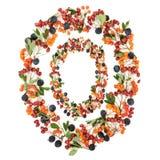 Abstrakcjonistyczny jesieni jagody wianek obrazy royalty free