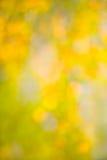Abstrakcjonistyczny jesieni tła bokeh zamazujący Obrazy Stock
