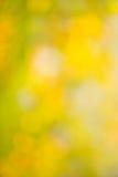 Abstrakcjonistyczny jesieni tła bokeh zamazujący Zdjęcie Stock