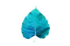 Abstrakcjonistyczny kolorowy błękitny liść, odosobniony na białym tle Obraz Stock