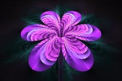 Abstrakcjonistyczny kolorowy kwiat na czarnym tle Obraz Royalty Free