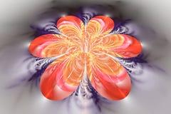 Abstrakcjonistyczny kolorowy kwiat na popielatym tle Obraz Royalty Free