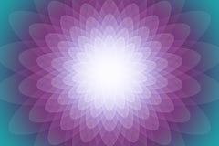Abstrakcjonistyczny kolorowy przejrzysty kwiatu tło lub Zdjęcie Royalty Free