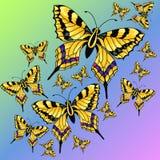 Abstrakcjonistyczny kolorowy tło z motylami Zdjęcie Royalty Free