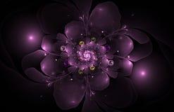 Abstrakcjonistyczny komputer wytwarzający fractal kwiatu wizerunek Fotografia Stock