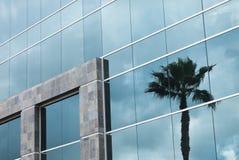 Abstrakcjonistyczny Korporacyjny budynek z drzewka palmowego odbiciem zdjęcie stock