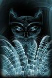 abstrakcjonistyczny kot fotografia royalty free