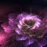 Abstrakcjonistyczny kwiat, komputer wytwarzał grafikę Zdjęcia Royalty Free