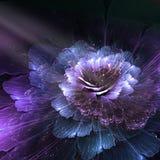 Abstrakcjonistyczny kwiat, komputer wytwarzał grafikę Zdjęcie Stock