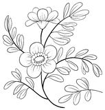 Abstrakcjonistyczny kwiat, kontury Fotografia Stock