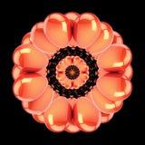 Abstrakcjonistyczny kwiat pomarańcze przyjęcie szybko się zwiększać wokoło dekoraci Fotografia Royalty Free