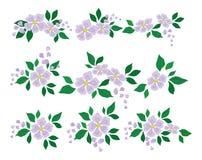 Abstrakcjonistyczny kwiat, set Zdjęcie Stock