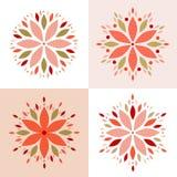 Abstrakcjonistyczny kwiatu okwitnięcia set Fotografia Stock