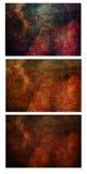 Abstrakcjonistyczny Kwiatu Tekstury Tercet Obraz Stock