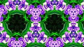 Abstrakcjonistyczny kwiatu wzór, kształt i Obraz Stock