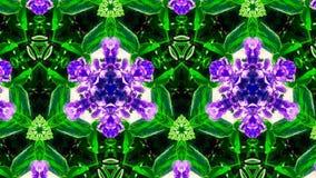 Abstrakcjonistyczny kwiatu wzór, kształt i Zdjęcia Stock