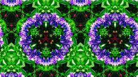 Abstrakcjonistyczny kwiatu wzór, kształt i Zdjęcie Stock
