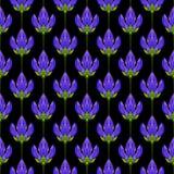 abstrakcjonistyczny kwiecisty deseniowy bezszwowy Kolorowy druk komponujący barwione purpury kwitnie na czarnym tle tła jaskrawy  Zdjęcie Royalty Free