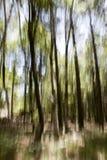 abstrakcjonistyczny las Obraz Royalty Free