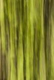 Abstrakcjonistyczny las Zdjęcia Royalty Free