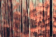 Abstrakcjonistyczny las Zdjęcie Stock