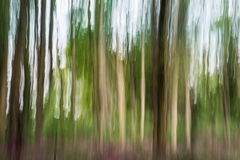 Abstrakcjonistyczny las w ruchu Obrazy Royalty Free