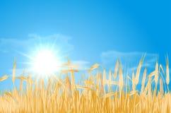 Abstrakcjonistyczny lato krajobraz z polem uprawnym, słońcem i chmurami, Fotografia Royalty Free