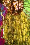 Abstrakcjonistyczny micrograph przeglądać z polaryzacyjnym mikroskopem olivine pyroxenite fotografia stock