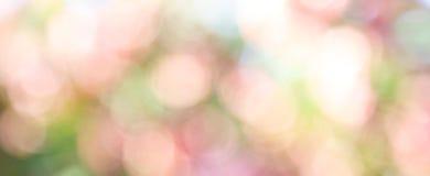 Abstrakcjonistyczny natury bokeh tło Fotografia Stock
