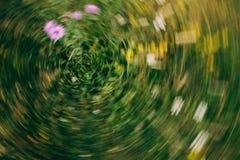 Abstrakcjonistyczny natury bokeh zamazywał tło dla projekta reklamuje twój tekst na tle w kopii przestrzeni zdjęcie royalty free