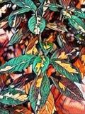 Abstrakcjonistyczny obraz multicolor liście - tło wizerunek ilustracja wektor
