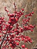 Abstrakcjonistyczny obraz Oranamental czerwone jagody - tło wizerunek royalty ilustracja