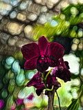 Abstrakcjonistyczny obraz purpurowa orchidea - tło wizerunek ilustracja wektor