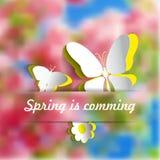 Abstrakcjonistyczny papierowych kwiatów tło wiosna t - papierowi motyle - Obraz Royalty Free