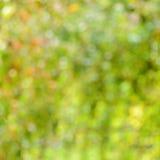 Abstrakcjonistyczny plamy zieleni natury tło Zdjęcie Stock