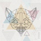 Abstrakcjonistyczny poligonalny tirangle zwierzęcia lemur Modnisia zwierzę Zdjęcie Royalty Free