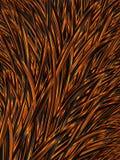 Abstrakcjonistyczny pomarańczowego koloru żółtego czerni trawy tło Halloweenowy jesień wzór szablon ilustracji