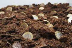 Abstrakcjonistyczny pomysł rosnąć pieniądze Obraz Stock