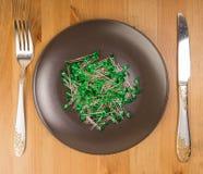 Abstrakcjonistyczny pomysł technologia jako jedzenie Zdjęcia Stock