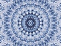 Abstrakcjonistyczny promieniowy wzór naturalny wielki dandelion Zdjęcia Royalty Free
