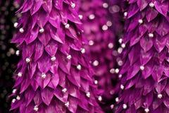 abstrakcjonistyczny purpurowy drzewo Zdjęcie Royalty Free