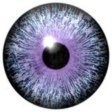 Abstrakcjonistyczny purpury oko na bielu Fotografia Royalty Free