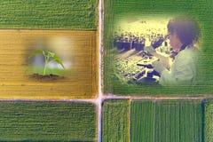 Abstrakcjonistyczny rolniczy kolaż Zdjęcia Royalty Free